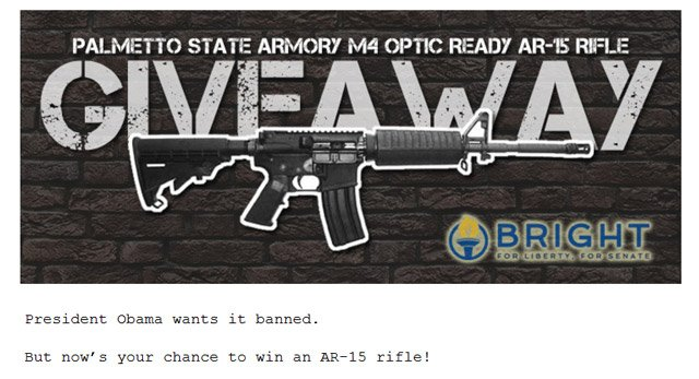 A screen grab of the contest website. (Source: brightforsenate.com)