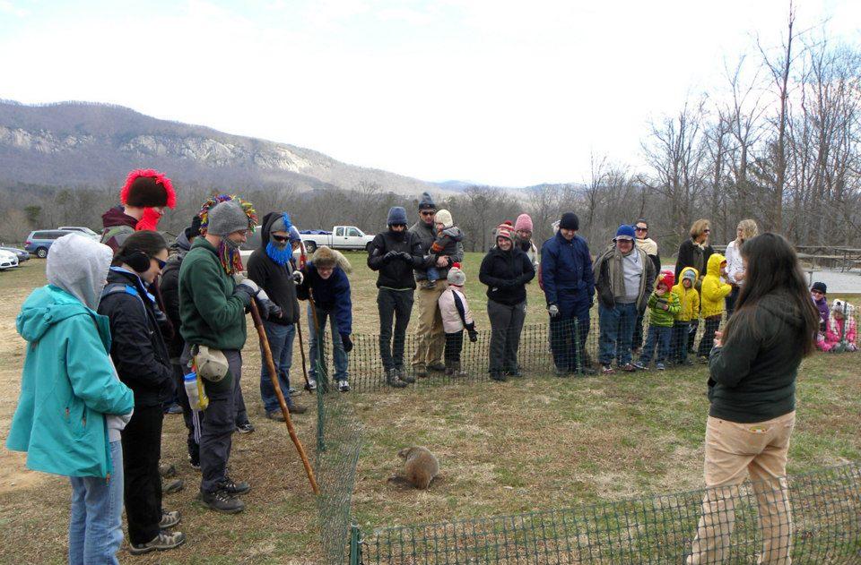 Spectators watch Grady the Groundhog (Courtesy: Chimney Rock State Park)