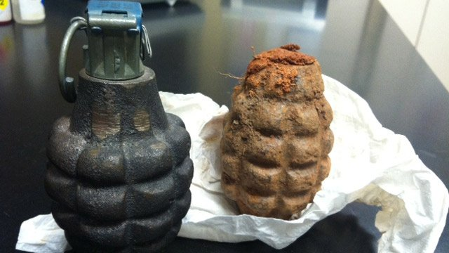 Two grenades - one on the right was discovered by the pig. (Feb. 19, 2014/FOX Carolina)