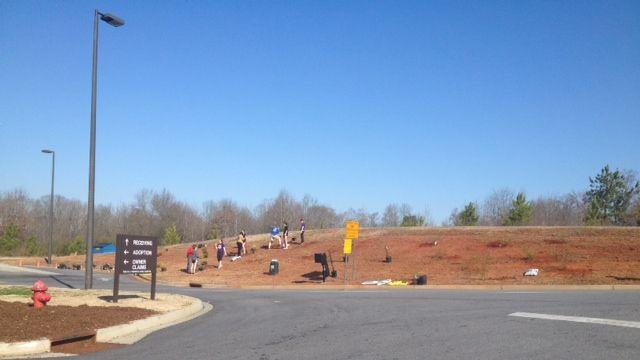 STLF volunteers at PAWS (Fox Carolina)