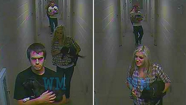 Deputies say these four are accused of stealing three puppies. (Source: Anderson Co. Sheriff's Office)