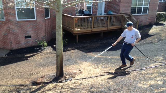 Witness Dat Nguyen puts out hotspots in his neighbors yard.  (April 2, 2014/FOX Carolina)