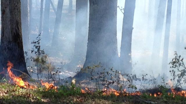 A controlled burn was conducted in Laurens County on Wednesday. (April 23, 2014/FOX Carolina)