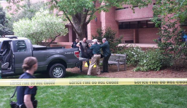 A 200-pound black bear was found dead on a park bench in front of Bostian Hall near the Brickyard on North Carolina State University's campus. (Tim Peeler, N.C. State)