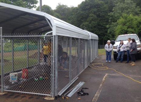 Volunteers work at Spartanburg Humane Society (FOX Carolina)