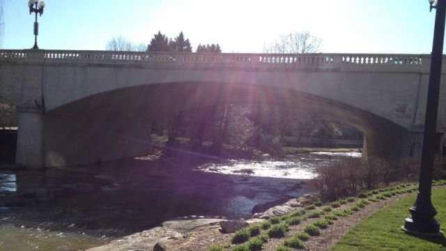Reedy River sunshine