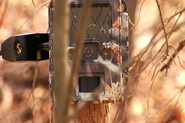Union County deputies are hiding cameras to catch litterbugs. (FIle/FOX Carolina 2014)