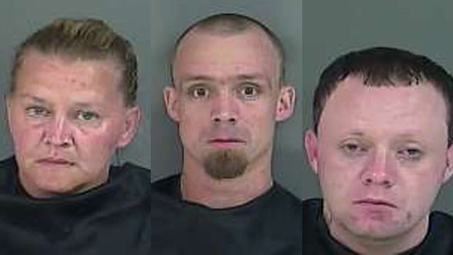 Tribble, Hutchins and Stewart: Accused of theft and trafficking meth. (Source: Anderson County Detention Center)