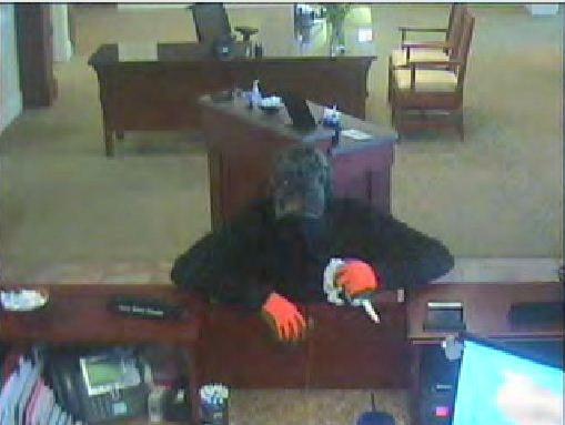 Hometrust Bank suspect (Asheville PD)