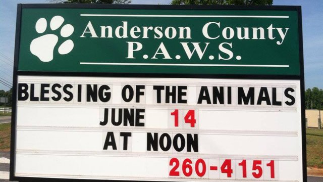 (Source: Anderson Co. PAWS Facebook page)