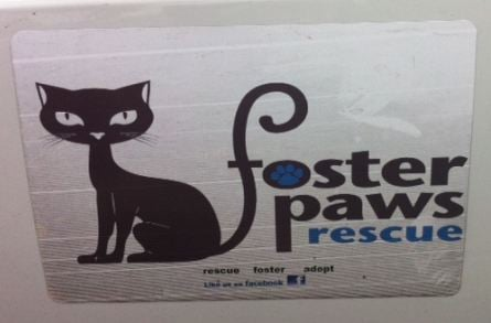 Foster Paws logo. (July 6, 2014/FOX Carolina)