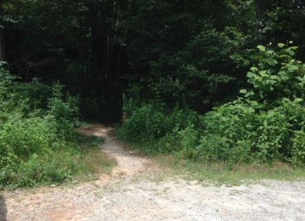 Big Bradley Falls trailhead (FOX Carolina)