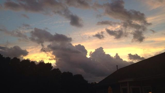 From Hannah in Easley