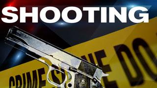 Deputies: woman shot twice