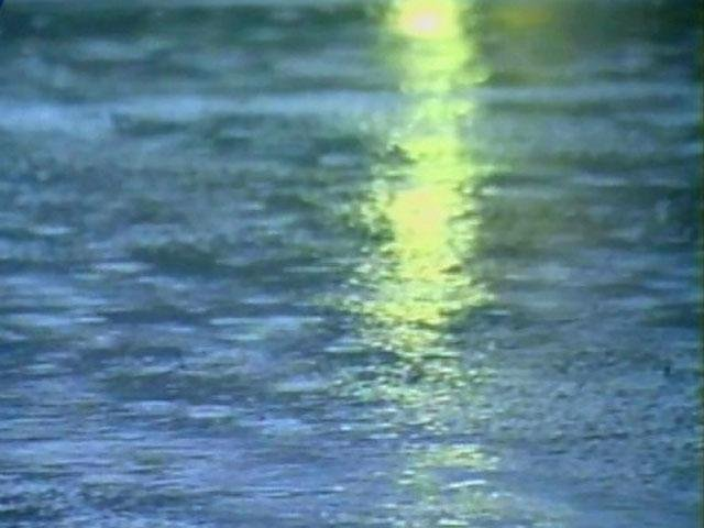 Puddles form after heavy rainfall. (File/FOX Carolina)