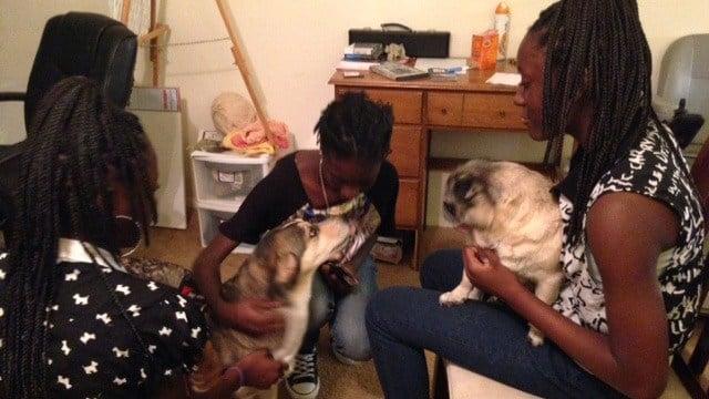 The teen sisters with Jinxy and Daisy. (Oct. 1, 2014/FOX Carolina)