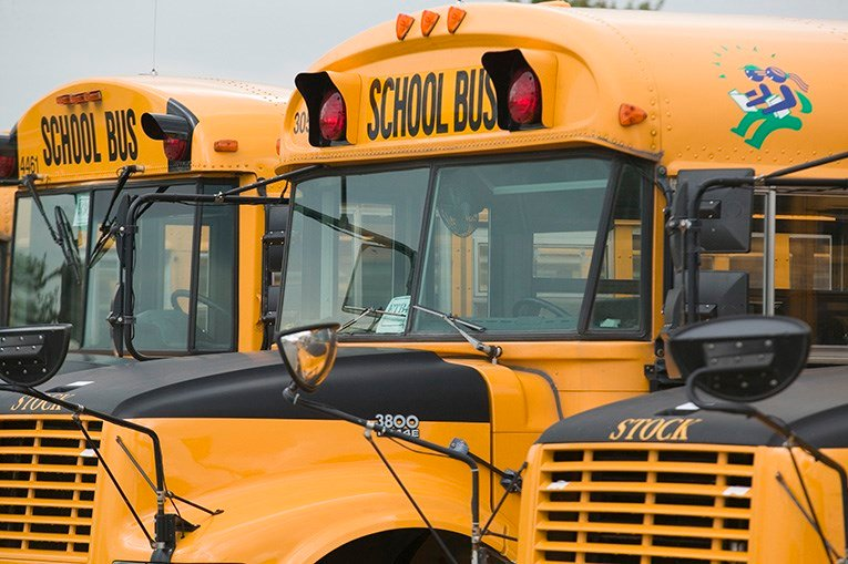 Seat belts may soon be required on school buses (FOX Carolina)