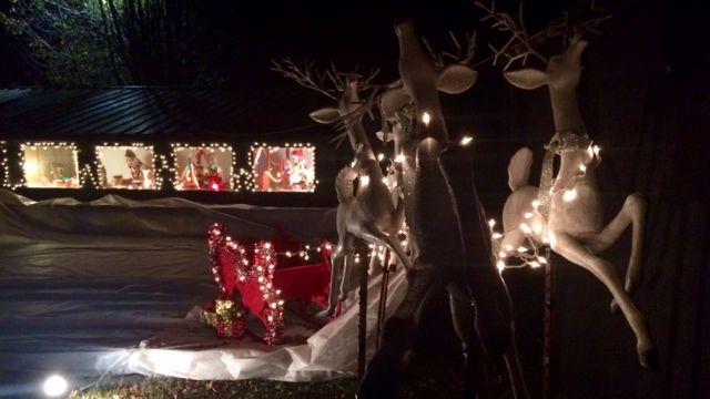 Holiday Lights Safari returns to Hollywild - FOX Carolina 21