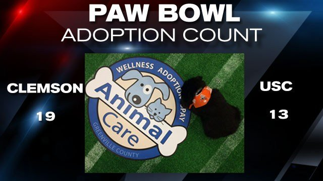 Final adoption count for the 2015 Paw Bowl
