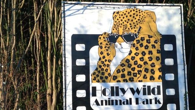 Hollywild Animal Park (FOX Carolina 12/8/2015)